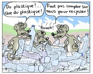 bickel eau plastique