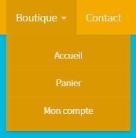 liens-acces-boutique